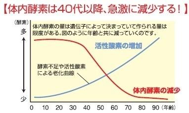 体内酵素は40代以降、急激に減少する