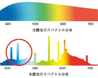 現代光源のリスク