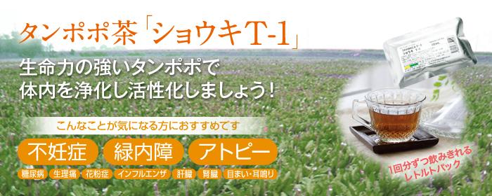 タンポポ茶 ショウキT-1