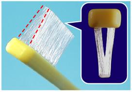 V型2列植毛