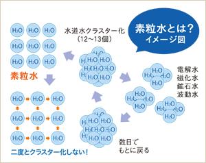 素粒水とは?