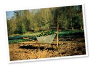 バイオダイナミック農法