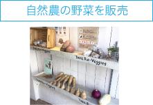 自然農の野菜を販売