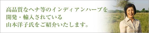 山本洋子氏のイメージ